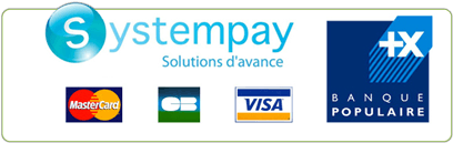 Secured payments with Systempay